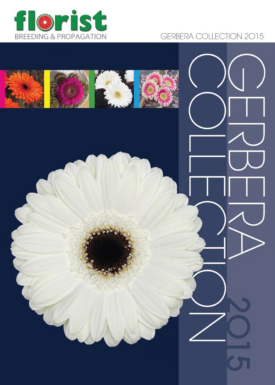 COPERTINA Catalogus_Florist Holland Gerbera Collection 2015