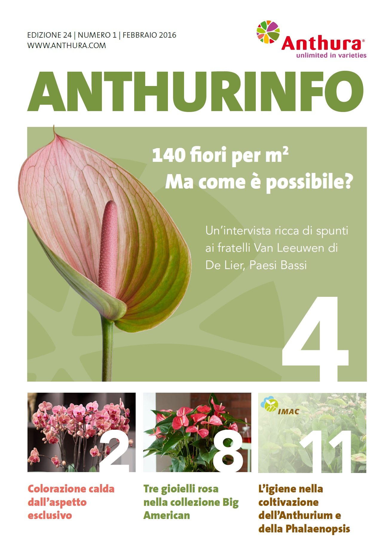 Anthurinfo 1-2016