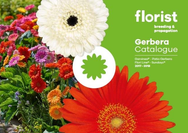 florist-gerbera-catalogue-2017
