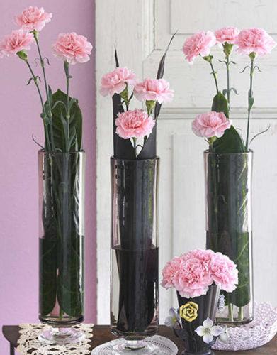 Garofani Cut Flower